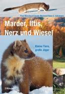 Marder, Iltis, Nerz und Wiesel
