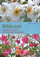 Wildrosen