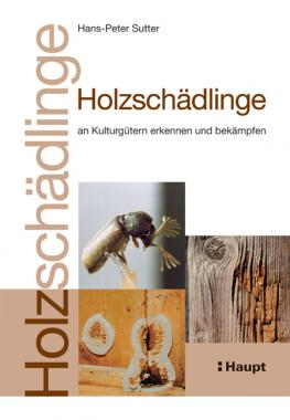 Holzschädlinge