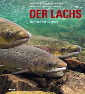 Der Lachs
