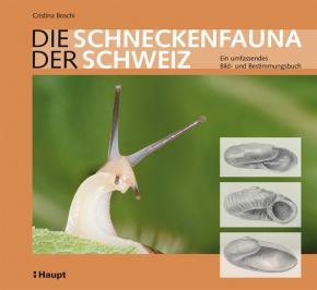 Die Schneckenfauna der Schweiz