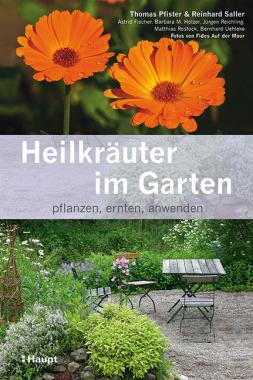Heilkräuter im Garten
