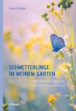 Schmetterlinge in meinem Garten