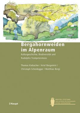 Bergahornweiden im Alpenraum