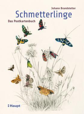 Schmetterlinge - Das Postkartenbuch