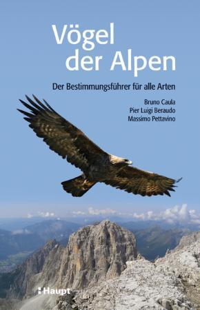 Vögel der Alpen