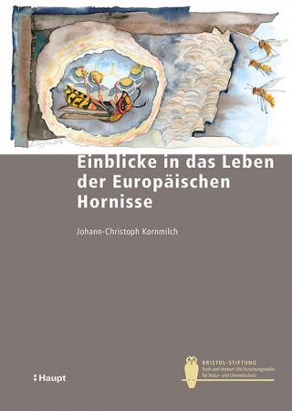 Einblicke in das Leben der Europäischen Hornisse