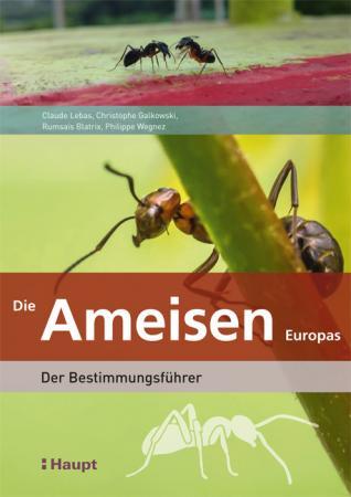 Die Ameisen Europas