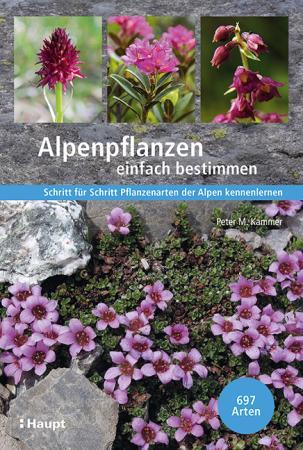 Alpenpflanzen einfach bestimmen
