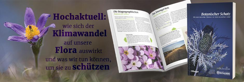 B_ Botanischer Schatz