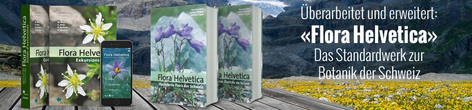 B_ Flora Helvetica