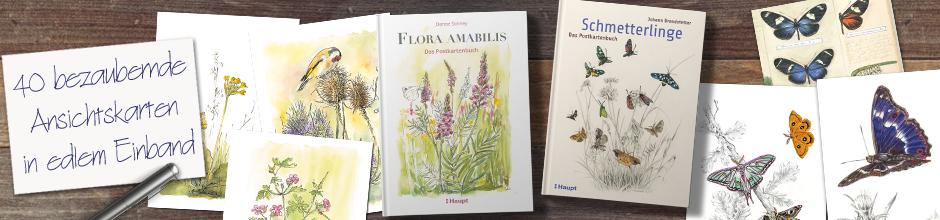 B_ Postkarten Flora a. & Schmetterlinge