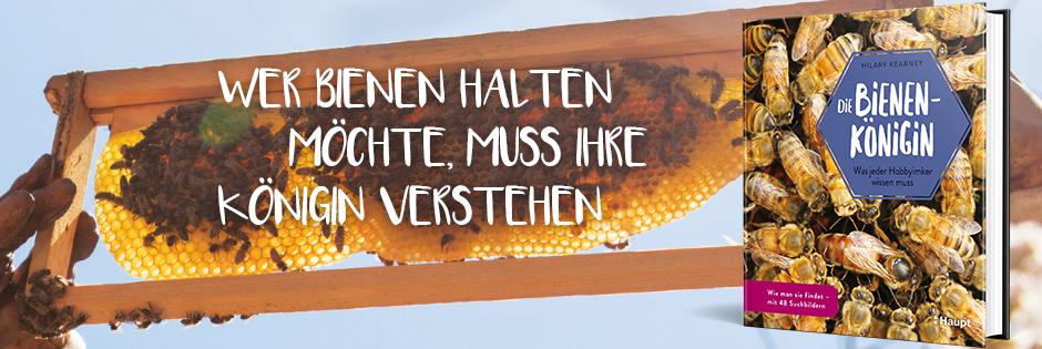 B_ Bienenkönigin