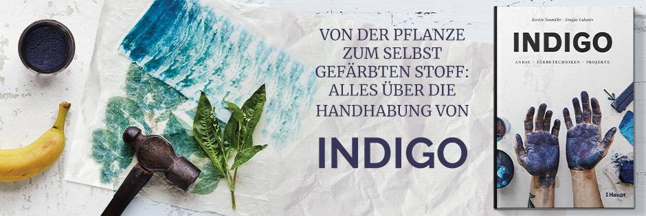 B_ Indigo