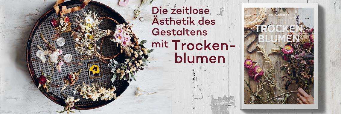 B_ Trockenblumen